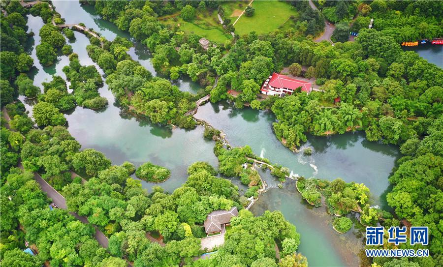保护湿地·万物共生